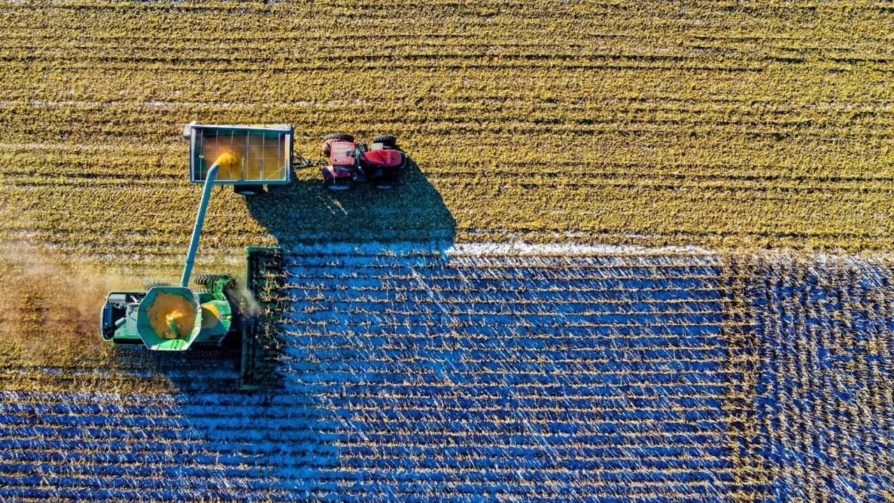 Imprese agricole: 5 milioni per innovare i sistemi produttivi